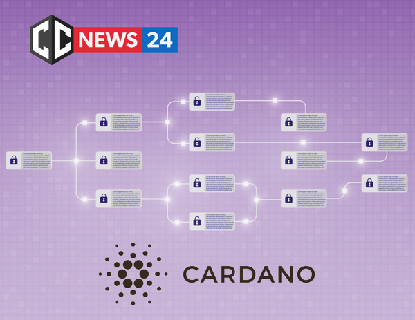 Cardano has completed the First successful tests of the fully decentralized Shelley network